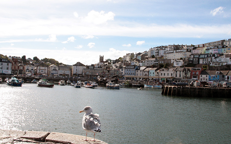 Located extremely close to Brixham Harbour